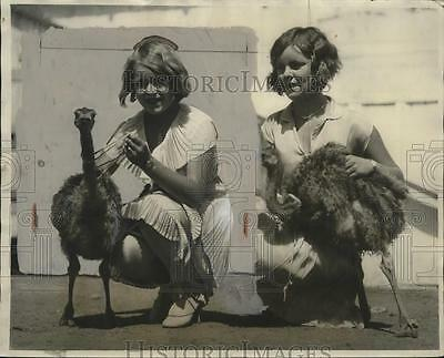 1928 Press Photo Ostrich chicks on exhibit at California show with Pomona girls