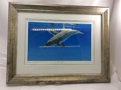 """"""" Serenity """" Dolphin Print Stephen Gayford Signed Limited Edition 438/1275 COA"""