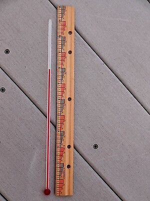 One Rare Old Factory Stock 11  Inch Glass Replacement Thermometer Tube