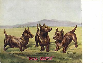 Advertising. James Buchanan Scotch Whisky by Tuck. Scottish Terriers.