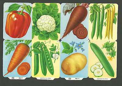 Mlp 1288 - Vegetable Scraps - Mamelok Press Discontinued Double Sheet