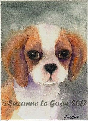Aceo Original Cavalier King Charles Spaniel Dog  Painting By Suzanne Le Good