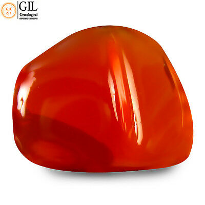 """14.23 Ct FREE """"GIL"""" CERTIFIED TOP BROWNISH RED 100% NATURAL MEXICAN FIRE OPAL"""