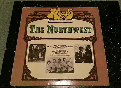 """Nuggets: Volume 8 The Northwest"" Rare Vinyl LP. Rhino, VGC."