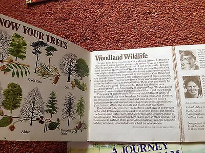 PG Tips picture card albums Woodland Wildlife 1980