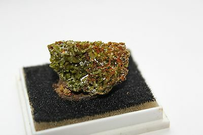 Pyromorphite Gard France  Mineraux Fossile Collection Cristal
