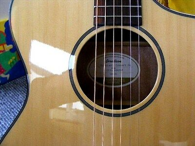Breedlove electro acoustic guitar