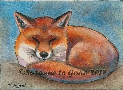 Aceo Original Sleeping Red Fox Miniature Watercolour Painting By Suzanne Le Good