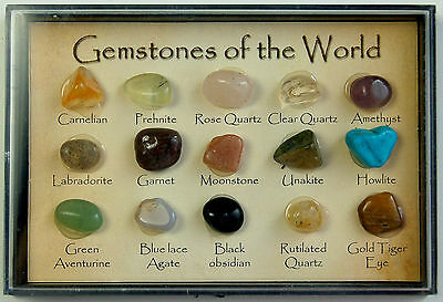 """15 Small Polished """"Gemstones of The World"""" In a Display Case"""