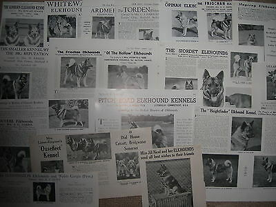 Elkhound kennel breed clippings