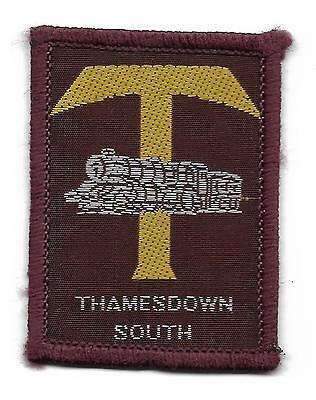 Thamesdown South District Scout Badge