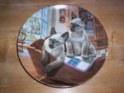 Kaiser Plate  2 Cute Siamese Kittens  KITS-IN-A-CRADLE #579 by Gerald Williams