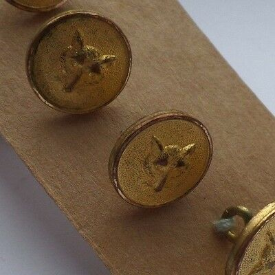 4 Vintage Livery Fox Buttons Equestrian Hunting
