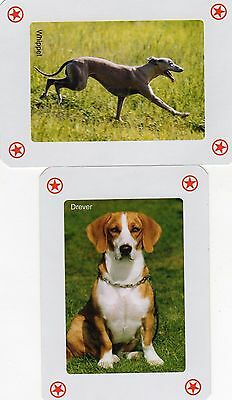 "Pair of RARE MINT ""Dogs"" JOKER Playing Cards #111"