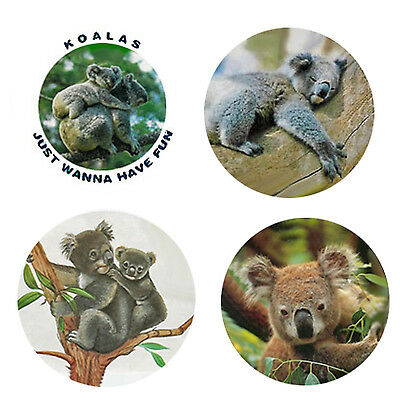 Koala Magnets-B  4 Krazy Koala Magnets 4 your home or collection-Great Gift