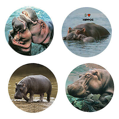Hippopotamus Magnets: 4 Cool Hippos for your Fridge or Collection-A Great Gift