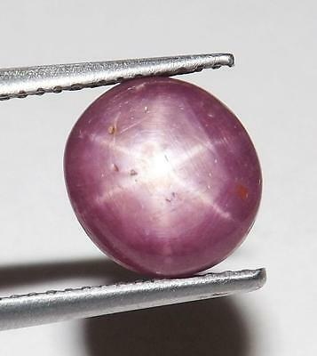 5.90 cts 100% Natural Untreated Pink Star Sapphire Cabochon Gemstone #asps05