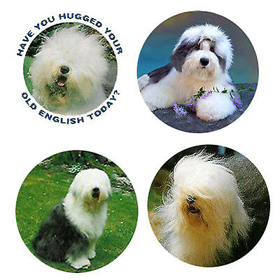 Old English Sheepdog Magnets: 4 OESs 4 your Fridge or Collection-A Great Gift