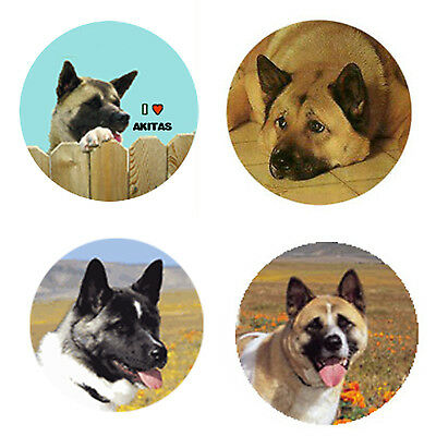 Akita Magnets: 4 Way-Cool Akitas for your Fridge or Collection-A Great Gift