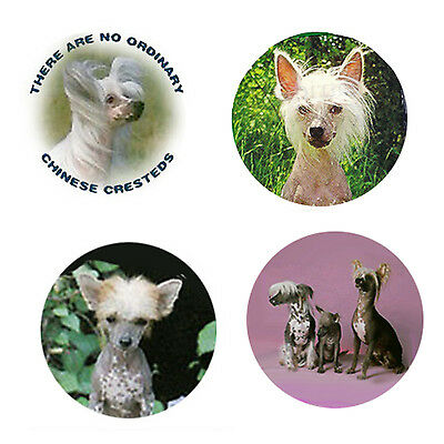Chinese Crested Magnets:4 Cool Cresties 4 your Fridge or Collection-A Great Gift