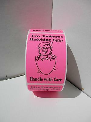 LIVE EMBRYOS HATCHING EGGS HANDLE WITH CARE pink fluorescent Labels 250/rl