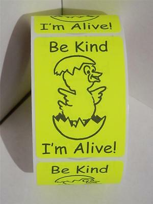 HATCHING EGGS BE KIND I'M ALIVE 2x3 sticker label fluorescent chartreuse 250/rl