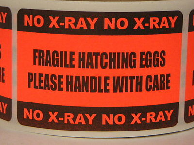 250 sticker labels, FRAGILE HATCHING EGGS HANDLE w. CARE NO X-RAY 2x3 fluor red