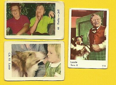 Lassie the Dog Jeff  Porky TV series Vintage 1960s Cards from Sweden LOT F