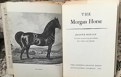 The Morgan Horse hardcover book Jeanne Mellin 1961 first edition ~ illustrated