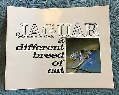1965 Jaguar XK-E Coupe & Roadster Booklet and Flyer