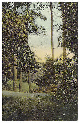 LIMPSFIELD Pathway to the Common, Old Postcard Unused, S&W Series