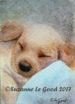 Aceo Original Golden Retriever Dog Puppy Watercolour Painting By Suzanne Le Good