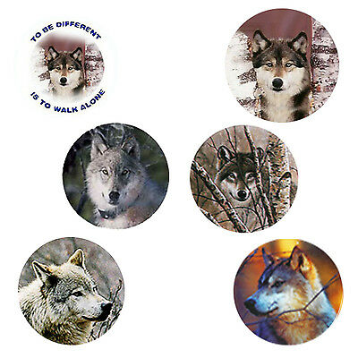 Wolf Magnets: 6 Way-Cool Wolves for your Fridge or Collection - A Great Gift