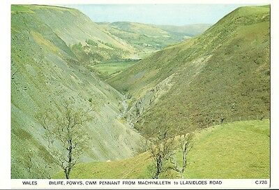 Machynlleth - a larger format, photographic postcard of Cwm Pennant