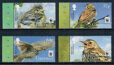 Guernsey 2017 WWF Bird Meadow Pipit on Set of Four Stamps MNH