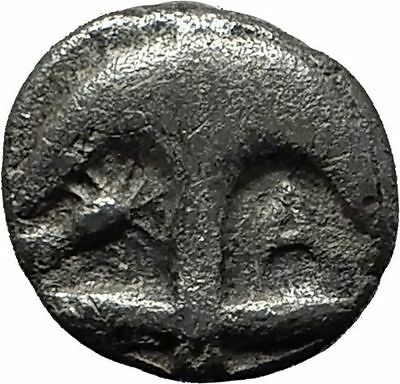 Apollonia Pontika 450BC Ancient Silver Greek Coin Gorgoneion Anchor Hope i59314