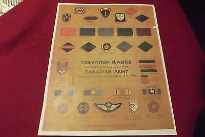 WW II Wall Chart Formation Flashes & Distinguishing Insignia The Canadian Army