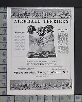 1920 Vibert Airedale Terrier Farm Dog Puppy Animal Weston N.j Vintage Ad  Cy73