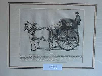 93878-Kutsche-Carriage-Curricle Tribus-T  Holzstich-Wood engraving