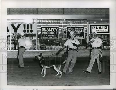 1964 Press Photo Chicago police used dogs and tear gas on day 2 of riot, Dixmoor