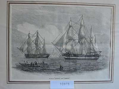 93975-Seefahrt-Schiffe-Ship-H.M.S.Erebus and Terror-T Holzstich-Wood engraving