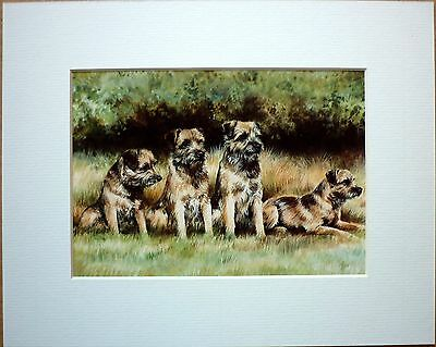 """Reduced Border Terrier By Caroline Cook Dog Art Card Print Mounted 10 X 8"""" Sale"""
