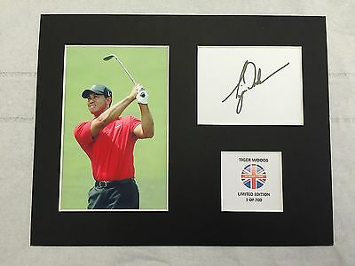 Limited Edition Ian Poulter Golf Signed Mount Display RYDER CUP THE MASTERS