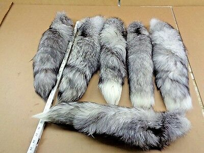 #1 XXXL Tanned Blue Frost Fox Tails/Crafts/Real USA Fur Tail/Harley parts/Purse