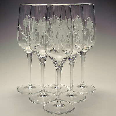 Edinburgh Crystal Tain 6 Six Champagne Flutes Glasses Fuchsia Signed Firsts 1980