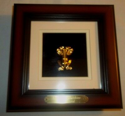 Framed Huaca Frog Pendant 24K Gold 925 Sterling  Reprosa Treasures of Panama