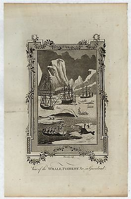 GREENLAND. View of the Whale Fishery. Original 1782 copper engraving