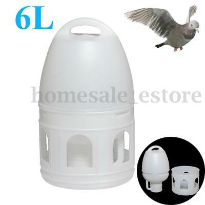 6L 6000ML Removeble White Plastic Drinker With Handle For Pigeons Birds Supplies