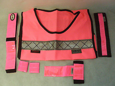 V-Bandz High Visability Starter Set Great for Winter Riding Pink In Colour