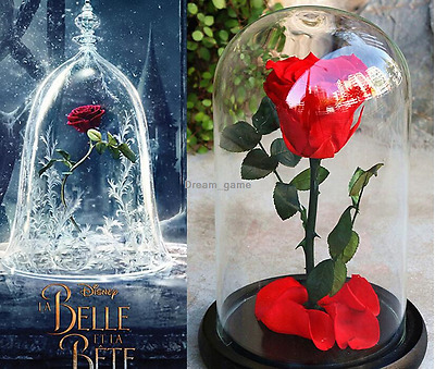 Preserved Fresh Flower Hanging Ornaments Car Upscale Gift for Valentine/'s Day